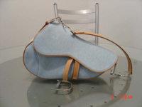 Dior Saddle.jpg