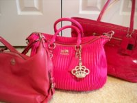 pinks5.jpg