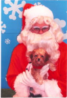 Elphaba with Santa 2.jpg