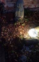 tiny tranquility garden.jpg