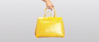 goyard yellow.png