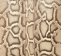 BV Pre-Fall 2019 Python Naturale 9219.png