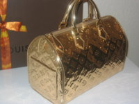 gold lv speedy 005.jpg