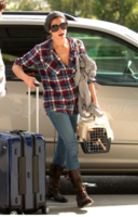 Twilight's Ashley Greene Movin' On - Splash News_1251935458623.png