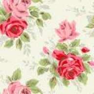 *Twinkle Pink*